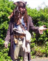 Caribbean Pirate